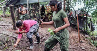 Desmovilizados de FARC construirán zonas de desarrollo socioeconómico